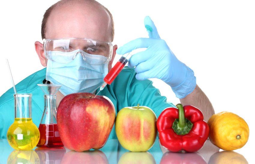 GMO-sm1
