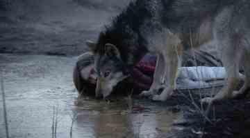 Writer-director Nicolette Kribetz discusses <em>Wild</em>