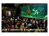 Five Minutes only From Sea World/Dufan