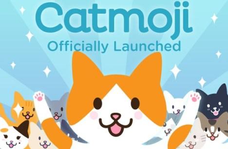 Catmoji-Cat-Social-Network