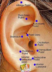 auriculo terapia puncte