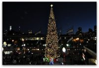 2018 San Francisco Tree Lighting Ceremonies and Other ...