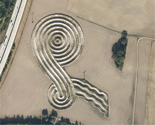 Un crop circle in forma di Kels apparso in un campo vicino all'aeroporto di Monaco in Germania