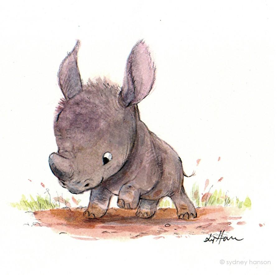 Rhino 3d Wallpaper Sydney Hanson Children S Book Illustrator And Production