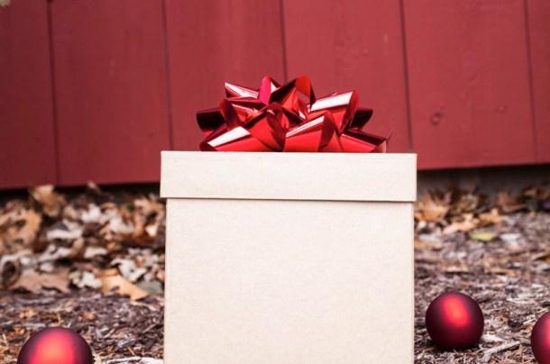 Rsz 1rsz 27342 shiny present