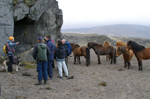 The horses patiently wait and listen as Einar shares the stories and histories of the area.