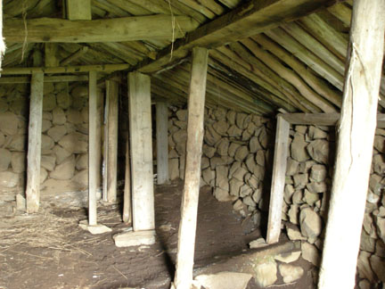This is the inside of the turf building above. The wooden frames were built and then lined with rocks, and the roofs were made of shingled slate stones which was then covered in turf. The support logs are not nailed or connected- don't lean against anything!! Our mission is to clear up one of these buildings that had collapsed long ago, and also uncover and rebuild a historic turf-and-stone sheep fold nearby.