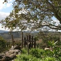 חוות הגבינות האורגנית - Agricampeggio Podere Il Casale