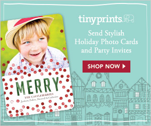 Snowflakes and Stationery Sale - 20% Off All of Last Year's Holiday Cards