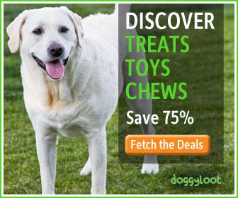 Treats, toys, chews. Subscribe at doggyloot