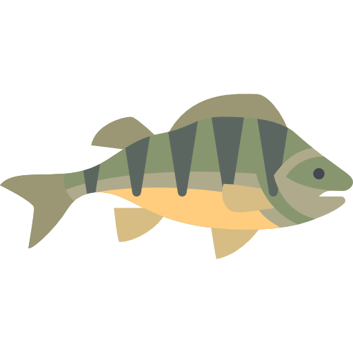 3d Animal Wallpaper 3d Fish Wallpaper Animal Fish Animals Aquarium Wildlife Aquatic Perch Icon