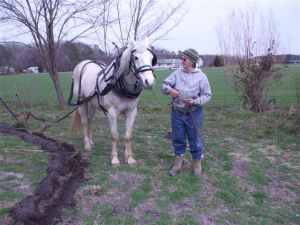 plowing maxx riding 020
