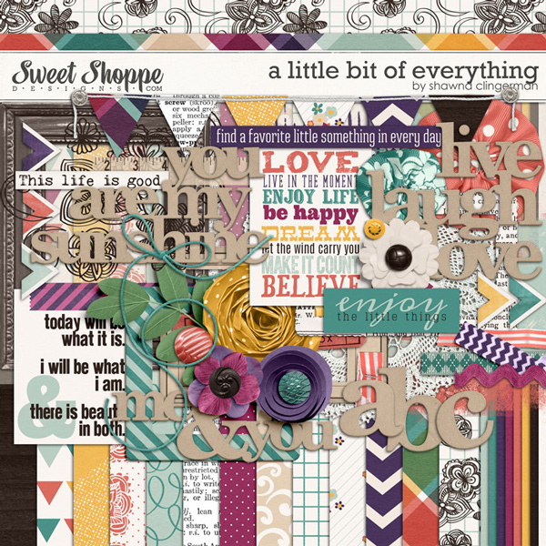 A Little Bit of Everything by Shawna Clingerman