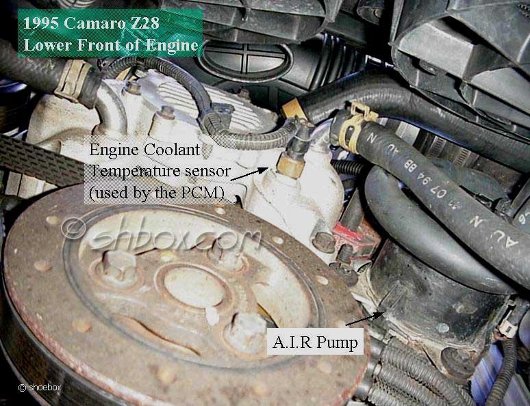 95 Lt1 Engine Diagram - 8mrkmpaaublomboinfo \u2022