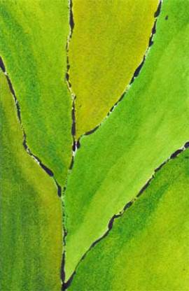 Leaf me alone. Watercolor and acrylic on 140 lb. Arches cold pressed paper. © 2014 Sheila Delgado