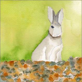 Cottontail Calling. 5 x 5 watercolor on 140 lb. Arches cold pressed paper. © 2016 Sheila Delgado