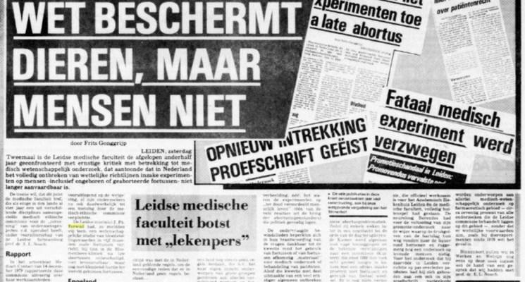 Telegraaf collage