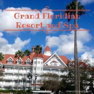 The Best Disney Deluxe Resorts Series