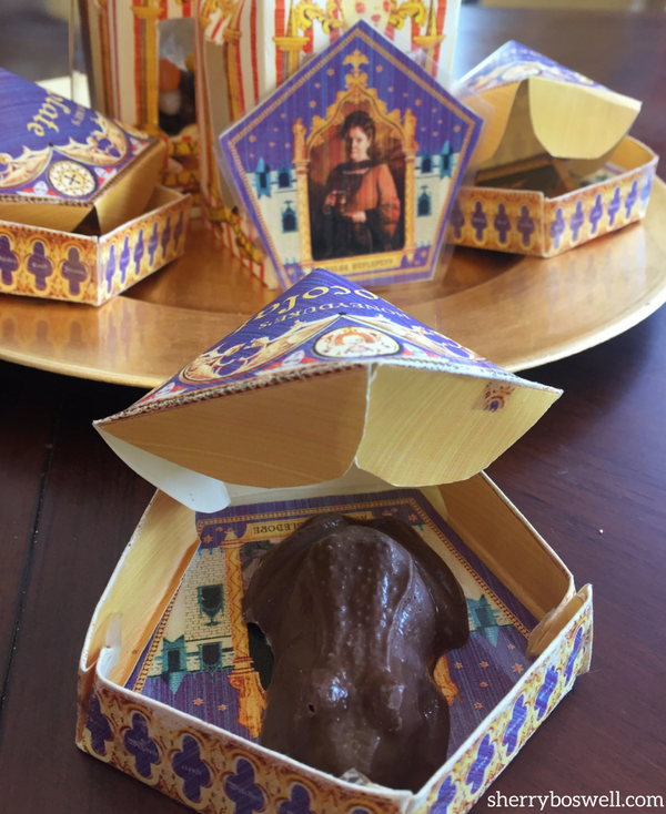 Chocolate frog in box Harry Potter party