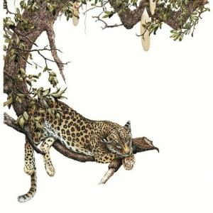 Sherry Steele Artwork - Power Nap | Leopard
