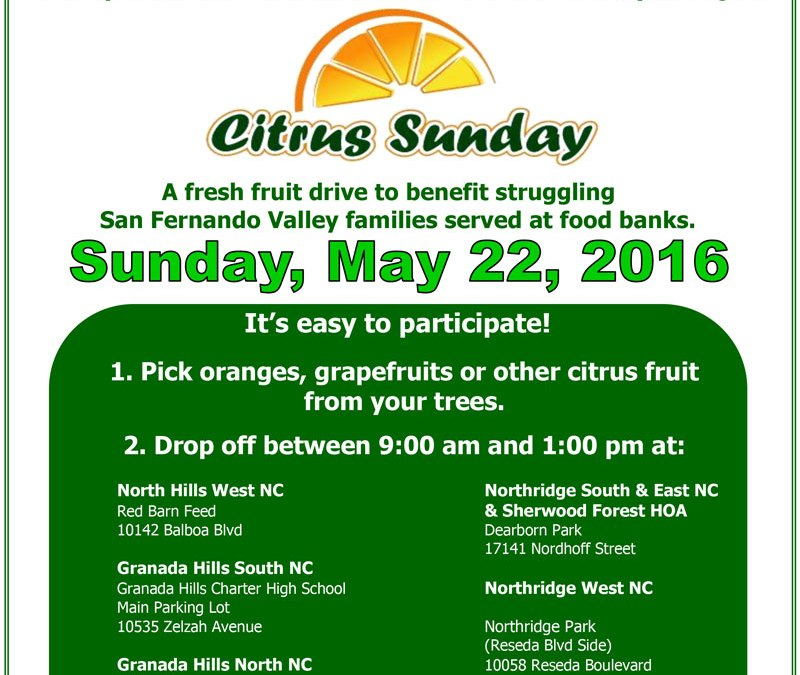 Citrus Sunday – May 22