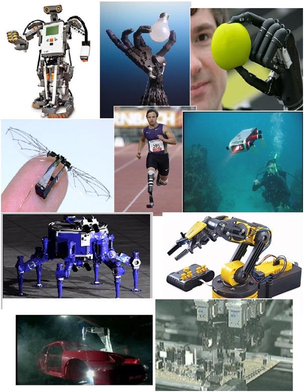 robotics_fields