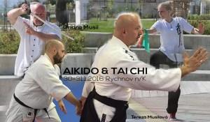 Aikido a Tai Chi @ Shin-Kyo Rychnov nad Kněžnou | Rychnov nad Kněžnou | Hradec Králové Region | Czech Republic