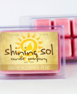 Southern Summer Picnic - Sol Scent