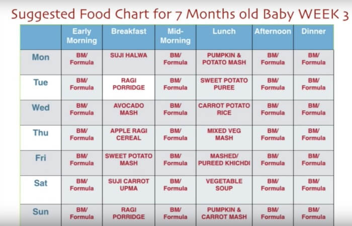 7 Month Baby Food Chart/ Weekly Meal Plan for 7 Months baby and Recipes