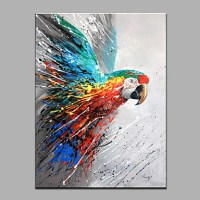 The Parrot Animal Oil Painting Wall Art Modern Canvas Art ...