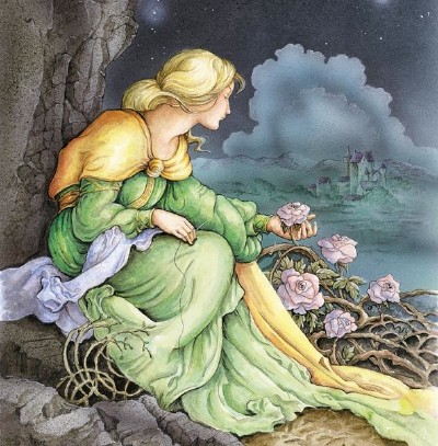 The Wild Swans Story Fairy Tales