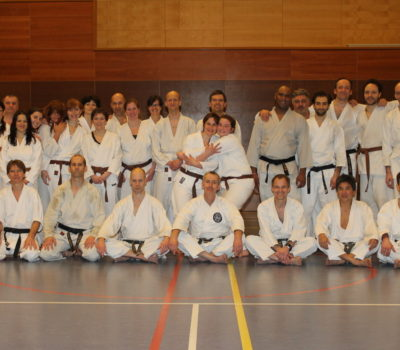 Special Training Shotokan Karate Nederland