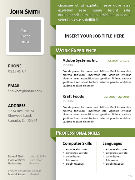 Format Curriculum Vitae Download Curriculum Vitae O Cv Clean Resumecv Template For Powerpoint