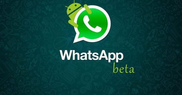 WhatsApp Beta para Android