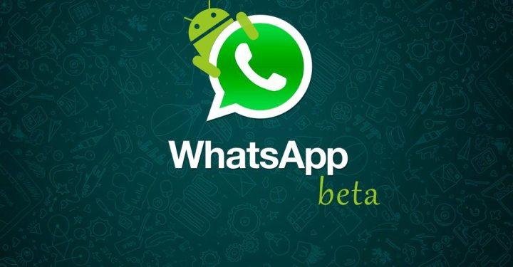 whatsapp_beta_android_smt