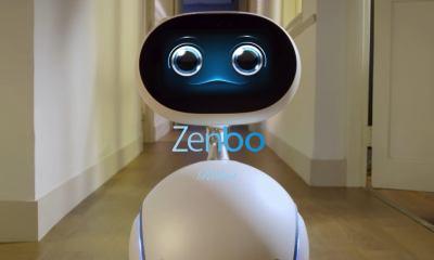 smt-Zenbo-capa