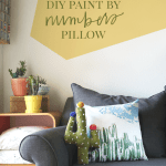 DIY Paint by Numbers Pillow