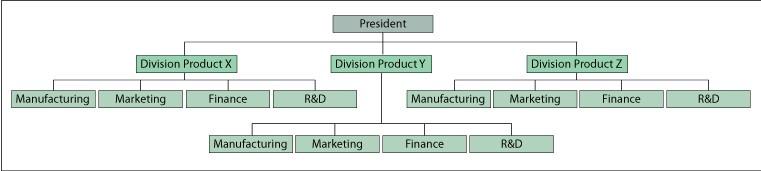Understanding Organizational Structures - departmental structure template