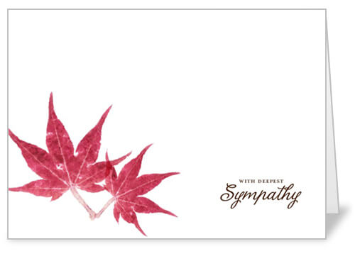 Sympathy Messages What to Write in a Sympathy Card Shutterfly