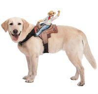 Dog Riders Pet Costume