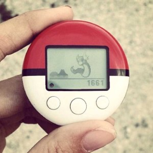 Pokemon Pokewalker