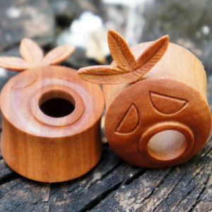 Legend Of Zelda Deku Plugs
