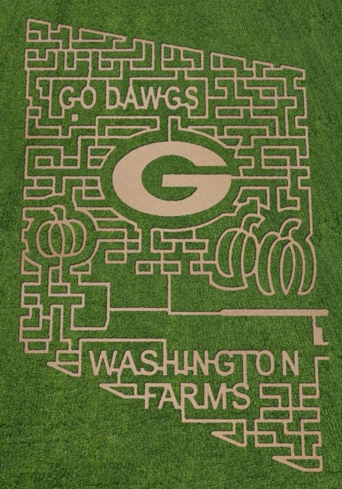 UGA Corn Maze