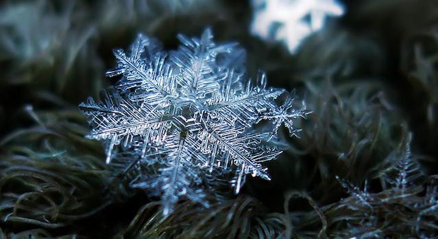 Real Snowflakes Falling Wallpaper Photographer Uses Homemade Lens To Take Incredible Macro