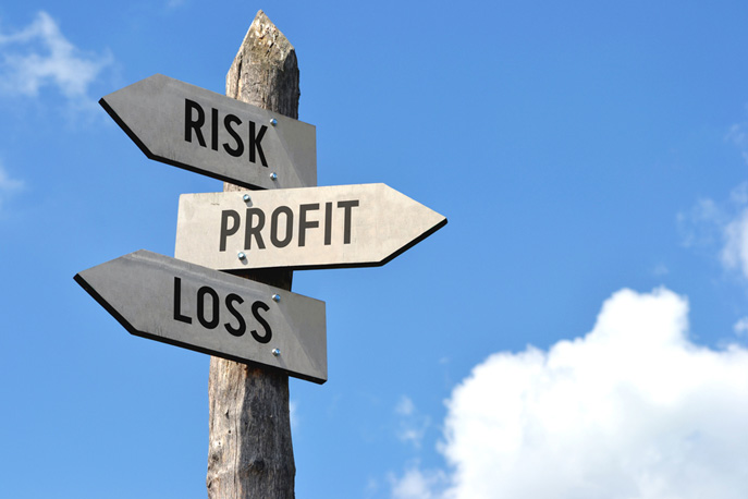 profit and loss from business