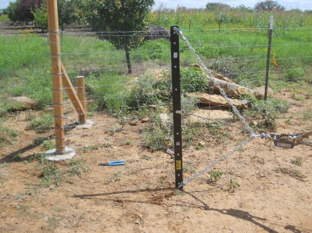 Pulling Wooden Fence Posts