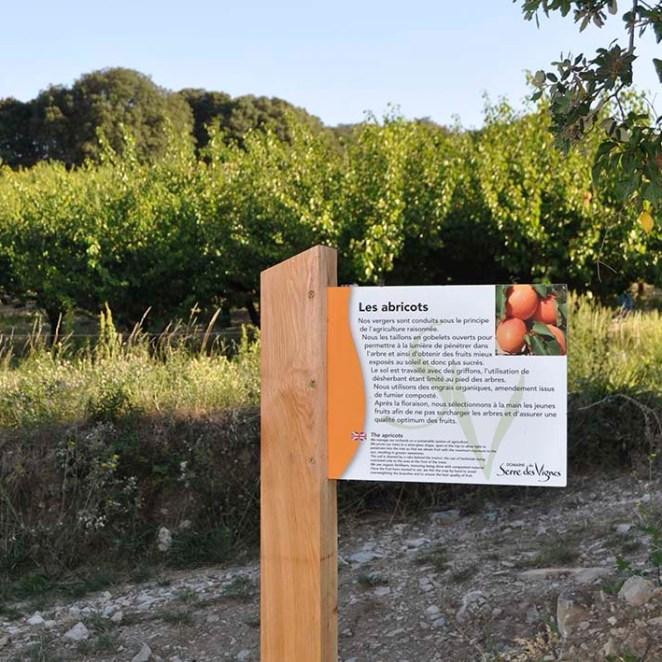 Panonceau thématique Serre des Vignes (26)