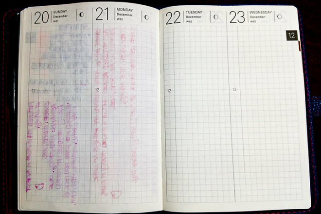 Hobonichi's Tomoe River paper with showthrough and some bleedthrough using medium to broad fountain pens.