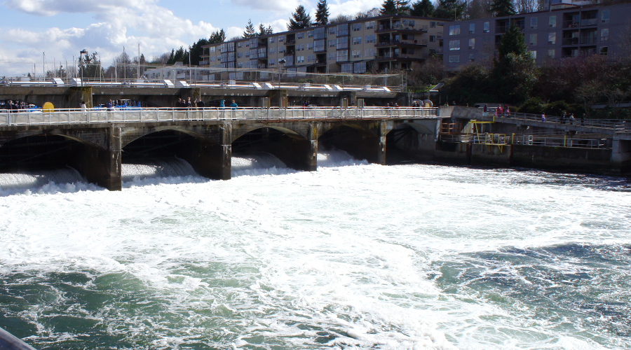 ballard-locks-seattle-washington-1