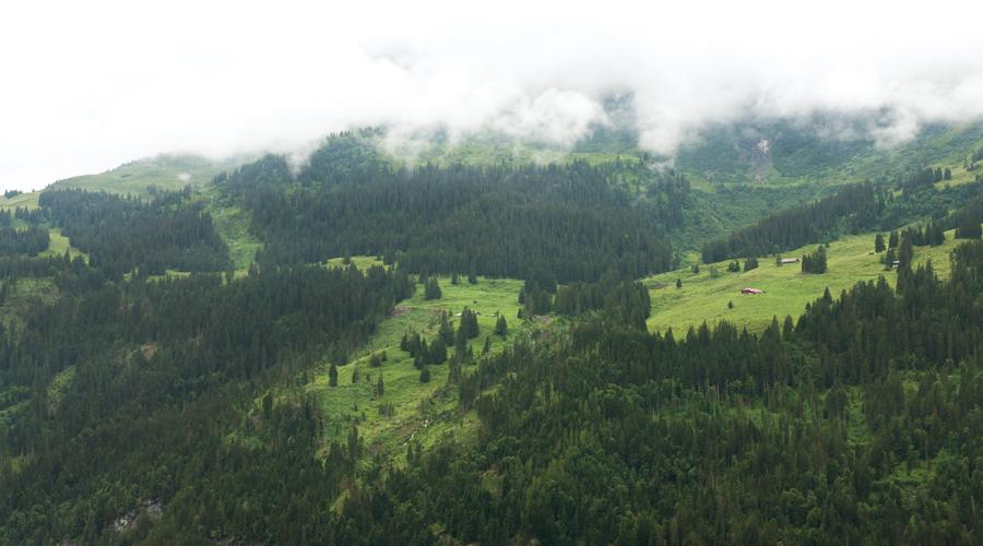 2014-silentlyfree-interlaken-switzerland-wengen-02